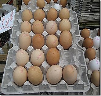 Bilder vom Radolfzeller Wochenmarkt 004